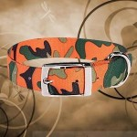 Zack & Zoey Dog Collar