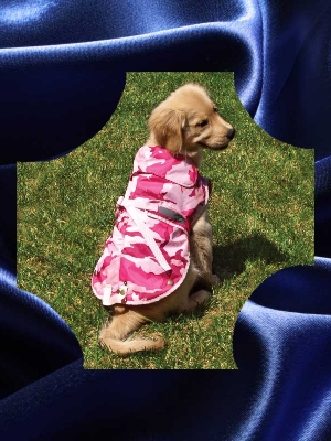 Zack & Zoey Pink Dog Jacket