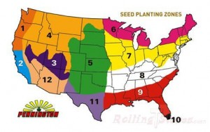 grass seed zones