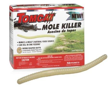 Get Rid Of Moles Mole Control
