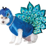 Peacock Dog Halloween costume