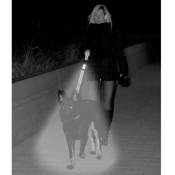 Woman walking dog with Patento flashlight dog leash