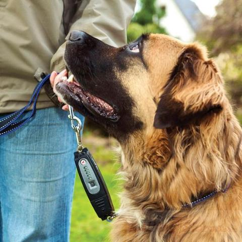 Patento Dog Leash Trainer