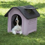 Happy Home Deluxe Dog House