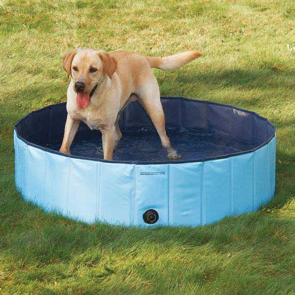 Cool Pup Dog Pool Extra Tough Pvc Folds For Storage 3