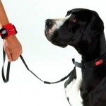 PatentoPet Hands Free Dog Leash