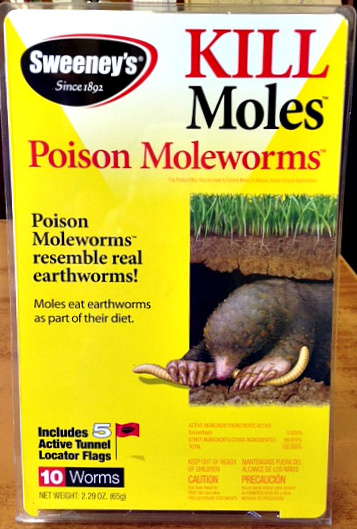 sweeney's mole worms