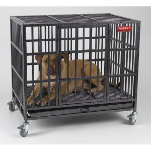 ProSelect Empire Dog Cage Graphite Gray