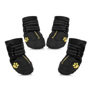 Uarter Dog Boots