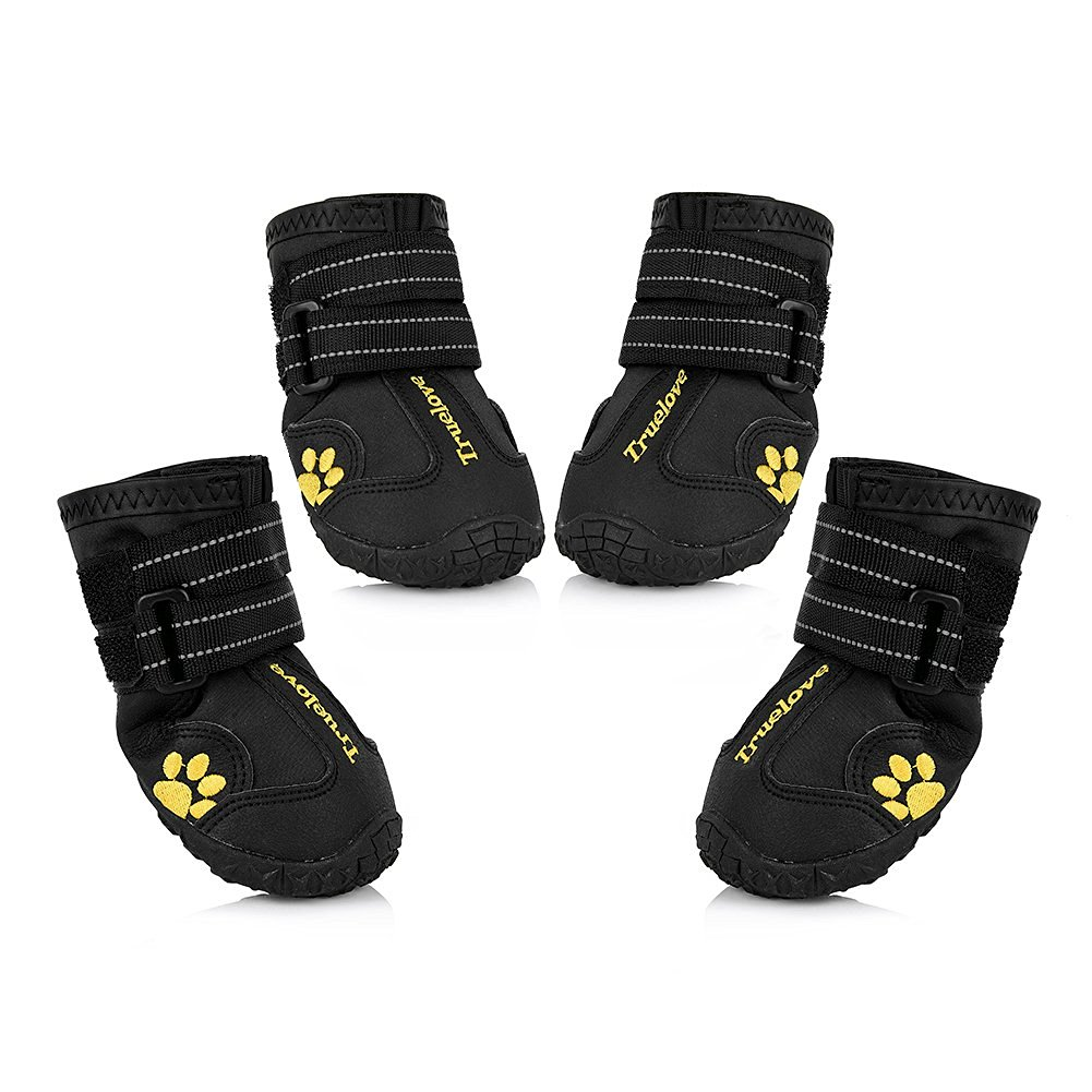 Best Water Shoes For Dogs