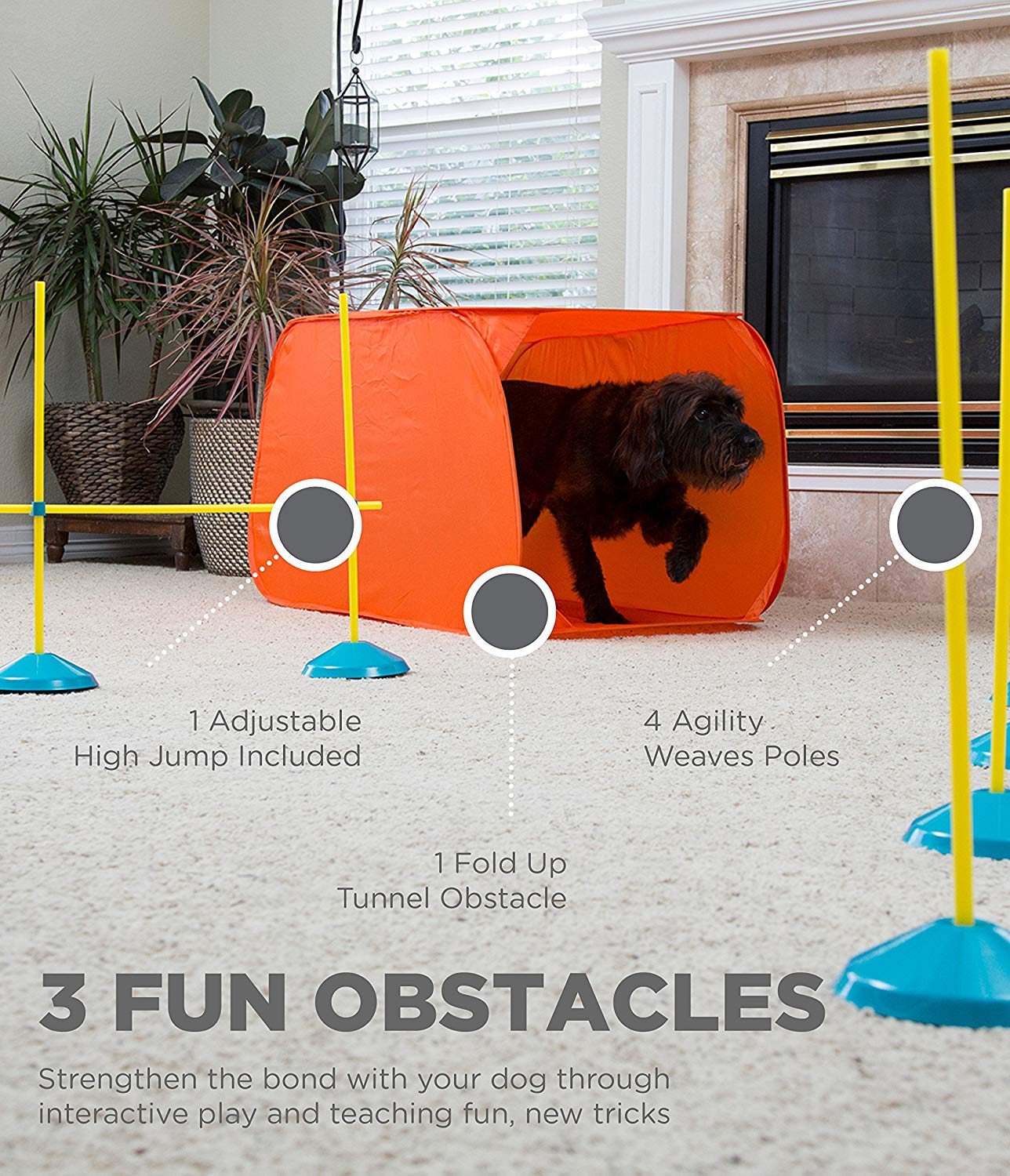 Outward Hound Agility Kit