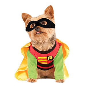 teen titan dog costume